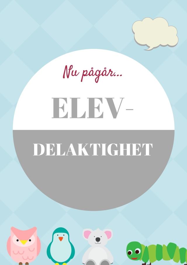 ELEV-DEMOKRATI
